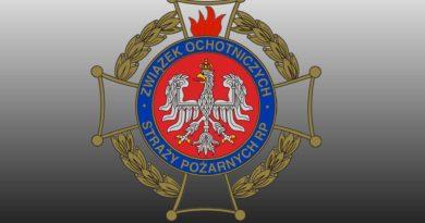 Szkolenie Dowódców OSP – styczeń 2021